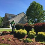 Pruning and Hedging